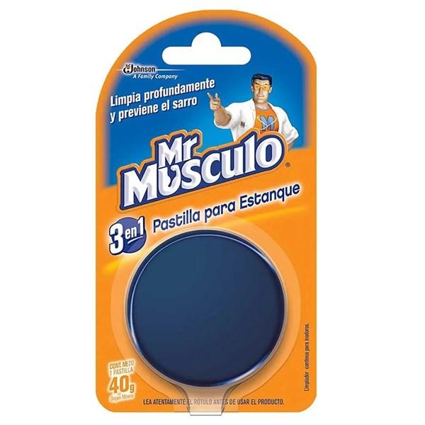 MR MUSCULO BLOQUE P/MOCHILA AZ x 48 GRS