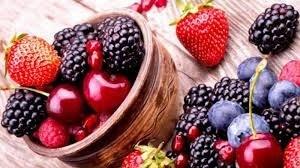 Hoch Sport Bioprot Premium Protein 80 Frutos Rojos 1000gr alt